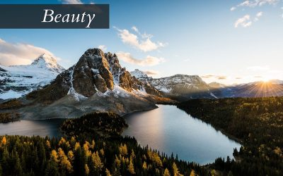 Beauty in Creation and Restoration