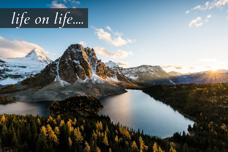 life on life – new discipleship for a new age